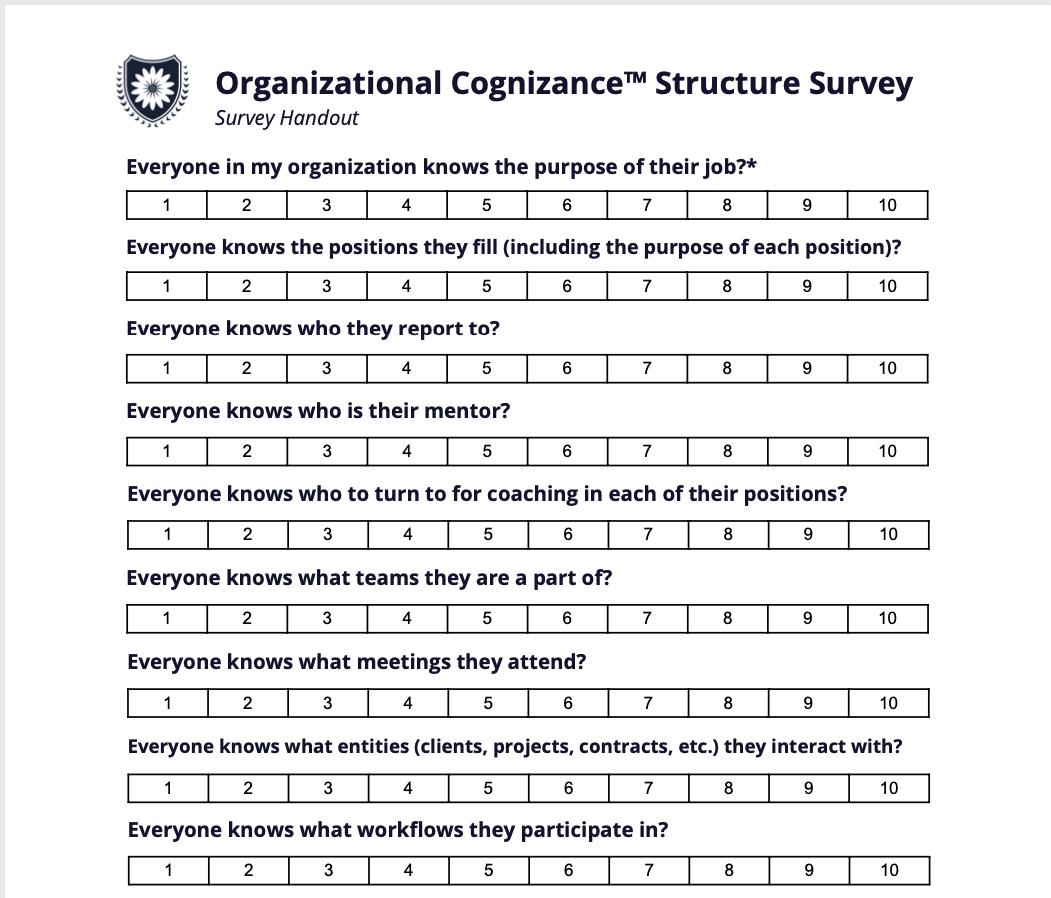 Organizational Cognizance Worksheet